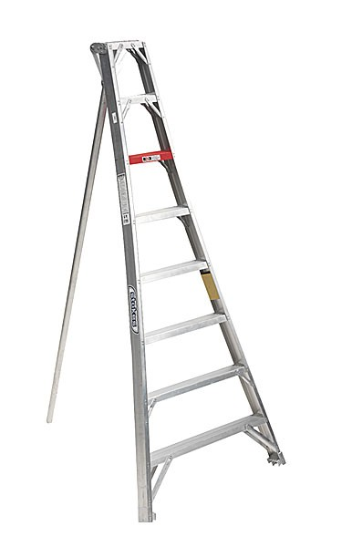 LADDER, ORCHARD 14'